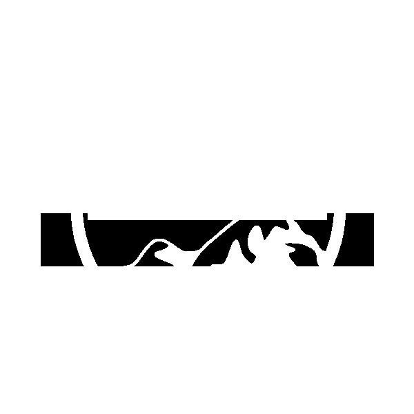 SUHC Logo
